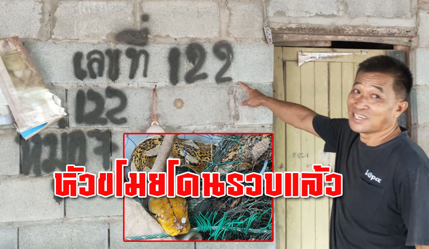 ชาวบ้านพบ งูเหลือมจอมเขมือบ กินไก่เกือบ 100 ตัว เตรียมเอาเลขที่บ้านไปเสี่ยงโชค